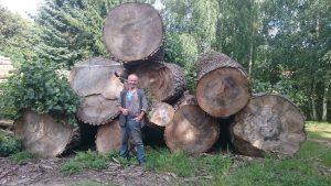 Harald Türke vor Pappelbaumstämmen
