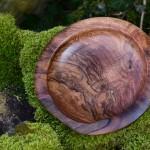 Holzschale unbemalt auf Moos