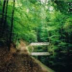 Laurabrücke im Seifersdorfer Thal