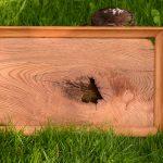 Tablett und Holzbild in einem, aus Roteiche